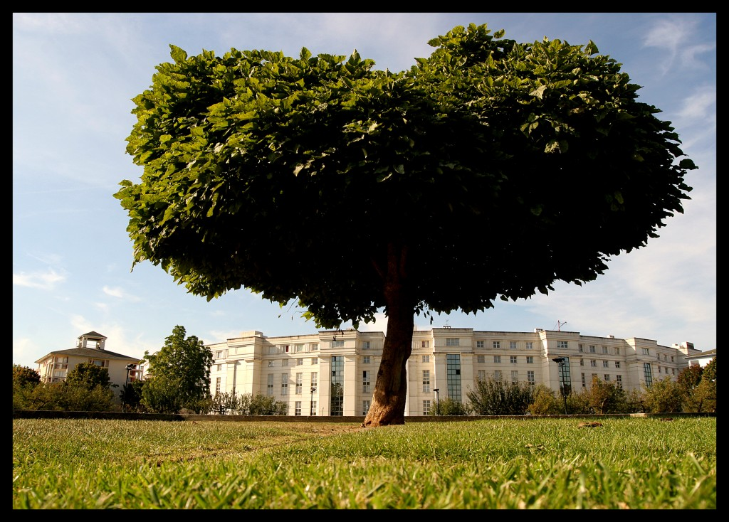 Jardin des droits de l'homme-Pierre Mendes France